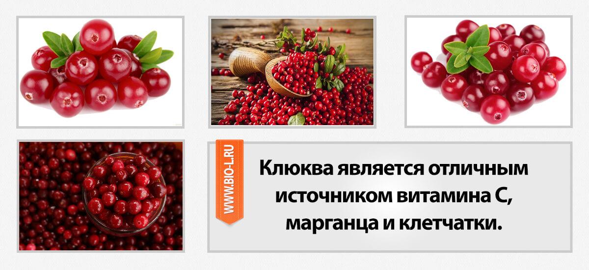 Клюква является отличным источником витамина С, марганца и клетчатки.