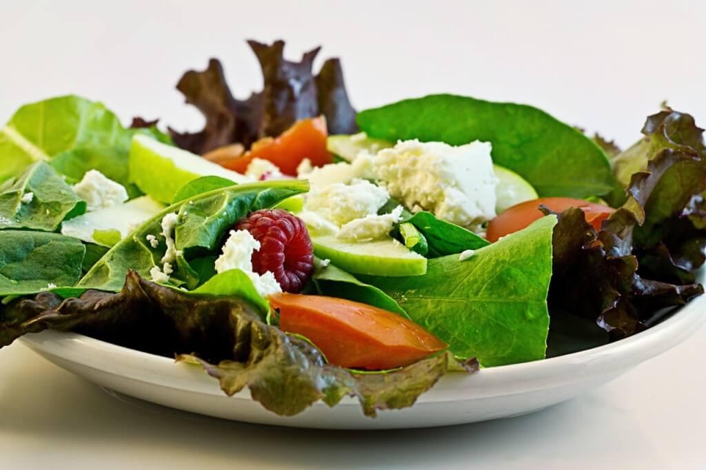 В растительной пищи содержится меньше железа, поэтому желательно добавлять витамин С в вегетарианскую диету для лучшего усвоения железа. Самые лучшие источники железа в растительной пищи: Фасоль, чечевица, соя, бобы. Листовые овощи, например шпинат. Витаминизированные хлопья для завтрака. Рис. Цельное зерно и хлеб с отрубями.