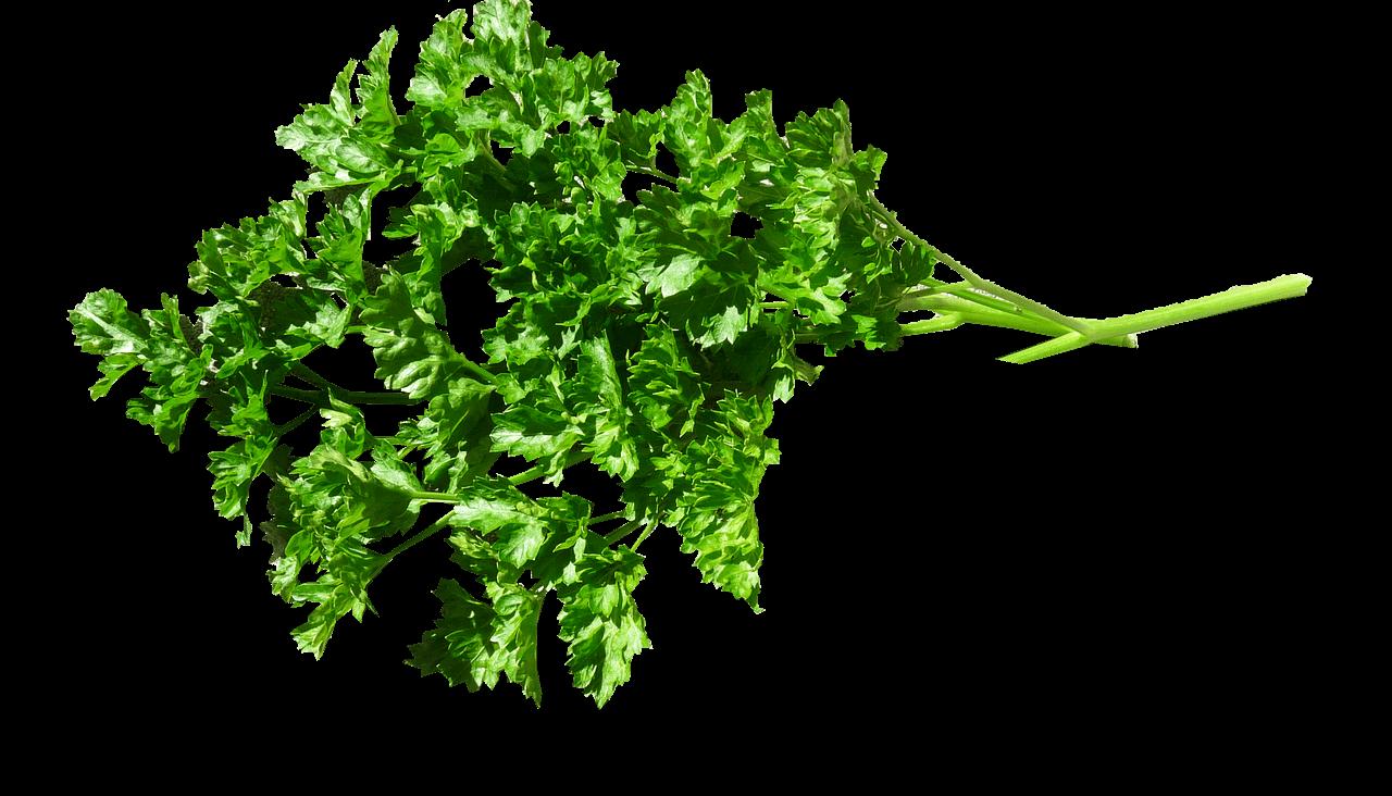 herb0