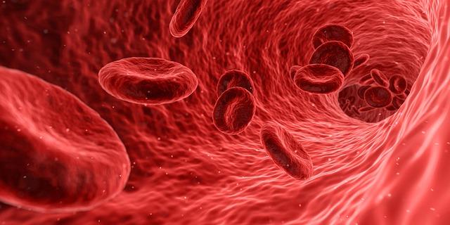 уровень тестостерона в крови